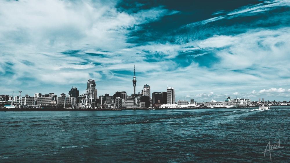 Auckland Teal